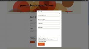 bws contact form